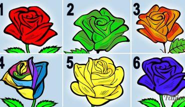 Która róża zachwyciła Cię najbardziej? Twój wybór zdradza Twe najpiękniejsze cechy