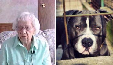 97-letnia Sophie pielęgnowała ogród i nagle zaatakowały ją 4 pit bulle! Gdy seniorka żegnała się z życiem, do akcji niespodziewanie wkroczył…