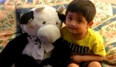 Pluszowa krowa uratowała temu chłopcu życie! Całe szczęście, że tego pechowego dnia miał ją przy sobie
