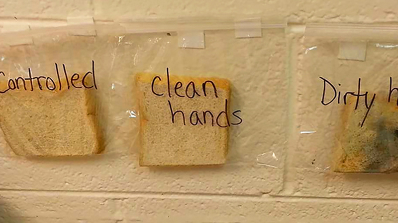 Prosty eksperyment, który pokazuje, dlaczego trzeba myć ręce! Teraz już nigdy nie tkniesz niczego brudnymi dłońmi
