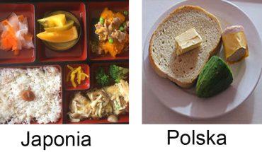 Posiłki w japońskich i polskich szpitalach. Niektórych dań nie podałbyś nawet psu!
