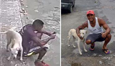 Prawie kopnął psa, bo ten pomylił go z hydrantem i oddał na niego mocz. Następnego dnia poszedł po rozum do głowy i przeprosił z nawiązką