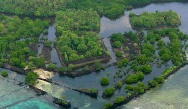 Czy wreszcie odnaleziono Atlantydę? Ruiny Nan Madol dają badaczom coraz więcej powodów do snucia ciekawych teorii