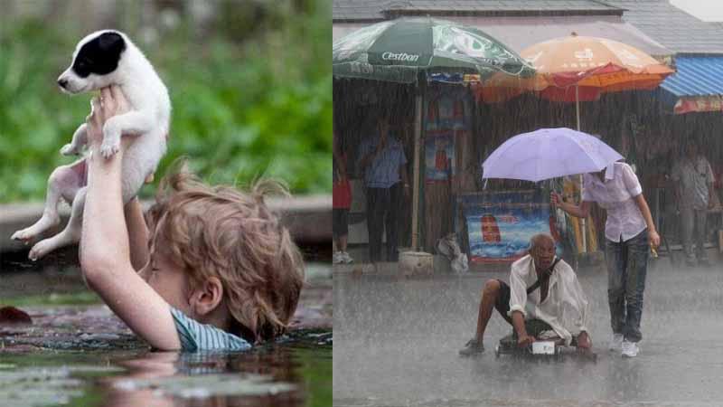 11 zdjęć, które przywracają wiarę w to, że na świecie jest wiele empatii i współczucia