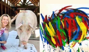 Pigasso, świnka uratowana przed rzeźnią nie tylko świetnie maluje i ma kupców na obrazy, ale będzie miała wystawy twórczości w największych galeriach Europy