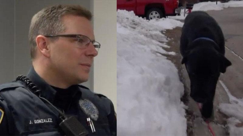 Policjant poszedł za dziwnie zachowującym się psem... Teraz obaj są bohaterami lokalnej społeczności