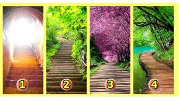 Wybierz jedną z 4 ścieżek, twój wybór wiele powie o twojej osobowości