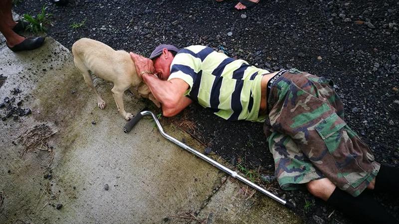 Te niezwykłe zwierzaki uratowały życie swoim opiekunom, odwdzięczyły się za miłość, jaką otrzymały