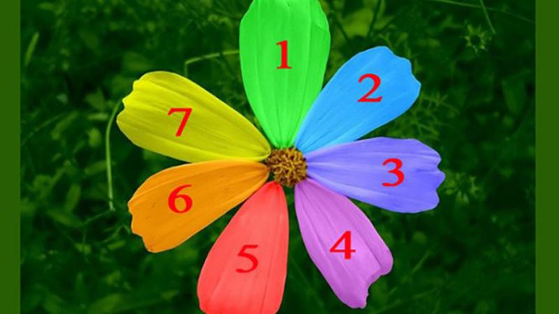 Wybierz płatek kwiatu i dowiedz się, czy twoje marzenie się spełni!
