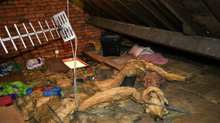 Matka usłyszała dziwne odgłosy dochodzące ze strychu. Jej synowie odkryli intruza, z którym mieszkała przez ponad 2 tygodnie!