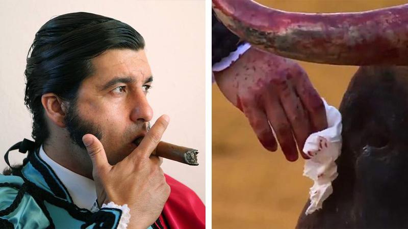Matador zamęczył byka na arenie, a potem otarł jego łzy chusteczką. Czysta hipokryzja!