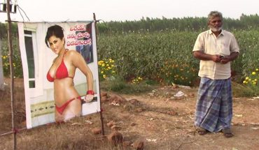 Farmer umieścił zdjęcie gwiazdy porno na polu kapusty. Miał mistrzowski plan!