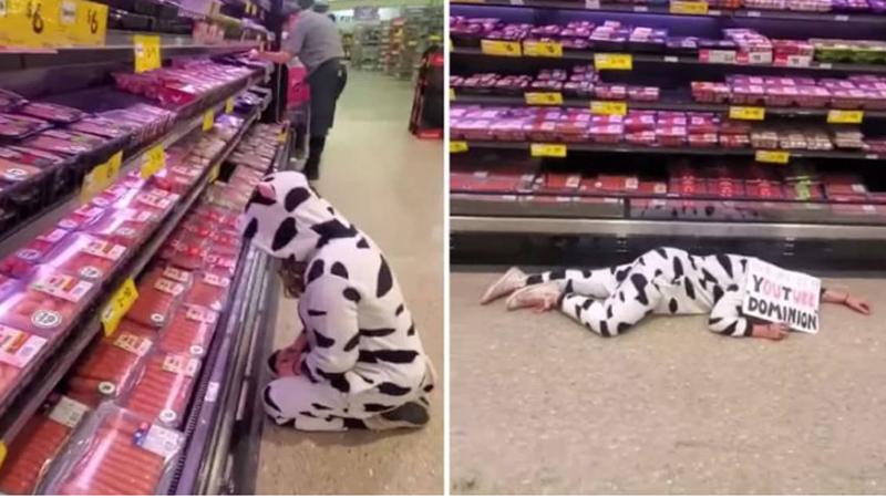 Weganka w stroju krowy opłakuje produkty mięsne w supermarkecie. Czy to już nie jest przesada?