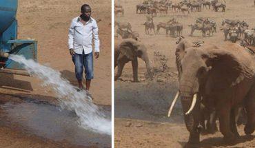 """""""Water man"""" z Afryki ratuje zwierzęta przed śmiercią z pragnienia. Reagują już na warkot jego ciężarówki!"""