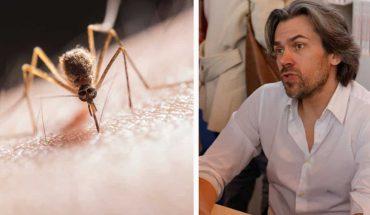 """Obrońca praw zwierząt mówi, że powinniśmy pozwolić komarom pić naszą krew! """"To matki, które muszą wykarmić dzieci"""""""