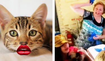 """Chciała powiększyć botoksem """"usta"""" kotu! Zrobiła piekielną awanturę, gdy odmówiono jej usługi"""