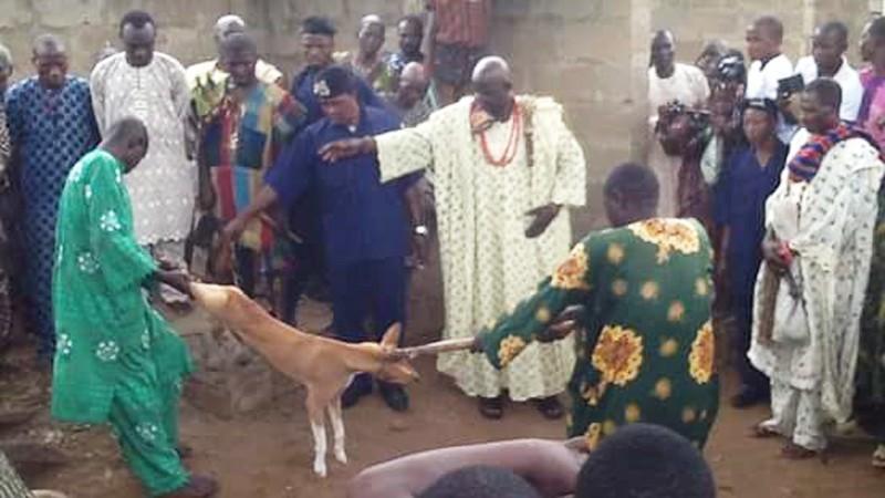 Rwą żywego psa na strzępy, by uczcić swego boga! Wszystkiemu przyglądają się dzieci