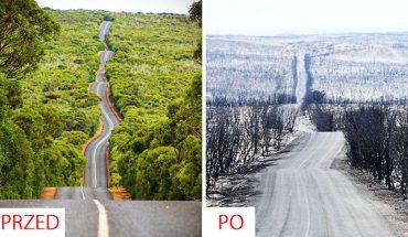 Australia przed i po pożarach. Te wstrząsające zdjęcia odbierają mowę!